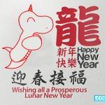Happy Lunar New Year 2563!