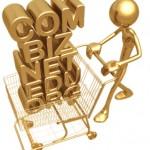 Penipuan Pembelian Domain