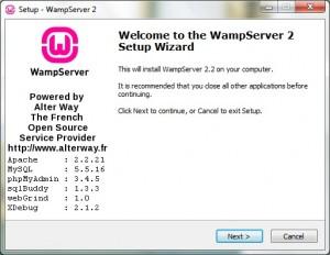 Install WampServer 01
