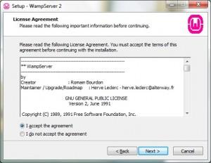 Install WampServer 02