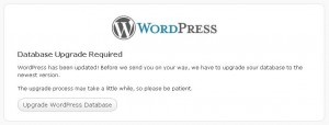Upgrade WordPress 3.0 - Upgrade Database